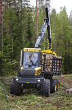 Timber harvesting Royalty Free Stock Photo