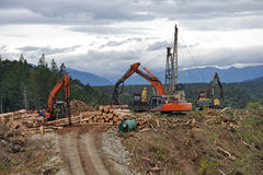 Timber hauler. A timber hauler drags Pinus radiata logs to a loading site at a forestry block in Westland Royalty Free Stock Photography