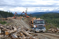 Timber hauler. A truck carries a load of freshly sawn Pinus radiata logs from a milling site on November 28, 2013, near Greymouth, New Zealand Royalty Free Stock Photos