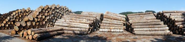 Timber heaps Royalty Free Stock Photos