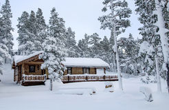 Timber house in the forest. Timber house covered with snow after snowstorm Royalty Free Stock Photo