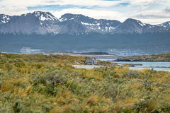 Timber house in Island and mountains view in Beagle Channel - Ushuaia, Tierra del Fuego, Argentina Royalty Free Stock Photos