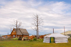 Timber house and Mongolian ger. Timber house and Mongolian yurt called a ger near Khovsgol Lake in northern Mongolia Royalty Free Stock Photos