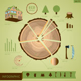 Timber industry infographic. Wooden log with design elements. Info graphic template royalty free illustration
