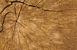 Timber log background Stock Photos