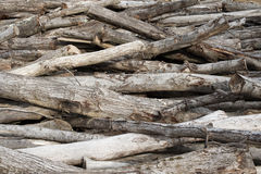 Timber Log Pile Royalty Free Stock Photography