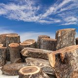 Timber logs with cloud and sky. Stock Photos