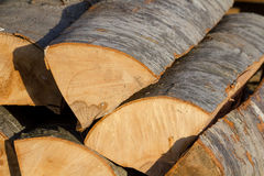 Timber logs Royalty Free Stock Photos