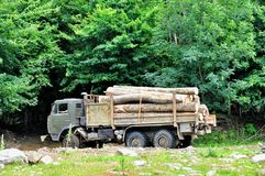 Timber logs on truck trailer Royalty Free Stock Image