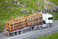 Timber logs on truck trailer Royalty Free Stock Photography