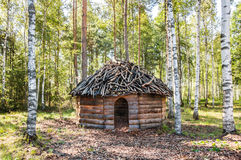 Timber made hut in birch forest. Hut made of tree beams and branches in sunny birch forest in summer Royalty Free Stock Image