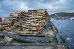 Timber on the pier. On the pier at the port of Halden, Norway has a larger ship unloaded timber to be transported further by truck to Saugbrags paper factory Royalty Free Stock Image