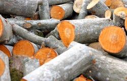 Timber pile royalty free stock photos