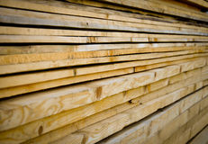 Timber pile Royalty Free Stock Image