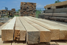 Timber. Planks and beams Stock Images