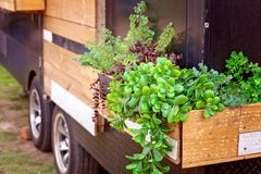 Timber Planter Box On A Truck. A timber planter box full of plants attached to the side of a truck stock photo