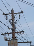 Timber power pole and transformer Royalty Free Stock Photos