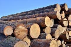Timber Royalty Free Stock Photos