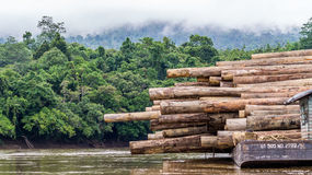 stack of huge timber on a barge stock image