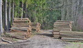 Timber ready for transport, South Bohemia Royalty Free Stock Photos