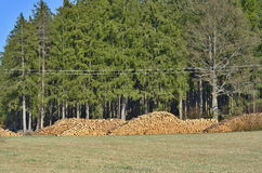 Timber ready for transport, South Bohemia Royalty Free Stock Photography