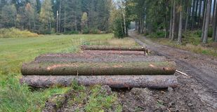 Timber ready for transport, South Bohemia. Czech Republic Stock Photos