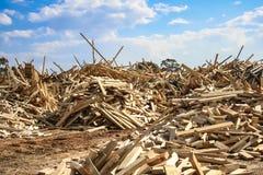 Timber recycling yard Stock Image