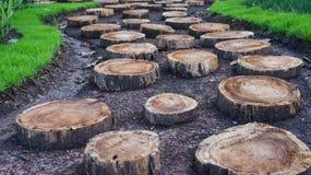 Timber road garden. Grass pavement carriage material Stock Photos