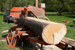 Timber Sawing Royalty Free Stock Photo