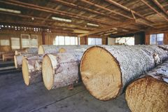 Timber at the sawmill. Lumber industry. Stack of the timber at the sawmill Stock Image