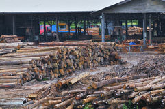 Timber Sawmill Series 5 Royalty Free Stock Photos