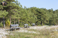 Timber seats on a field Royalty Free Stock Images