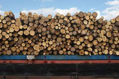 Timber ship Royalty Free Stock Photo