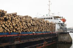 Timber ship Royalty Free Stock Image