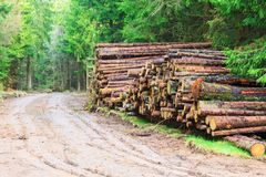Timber stack by the country road Stock Images