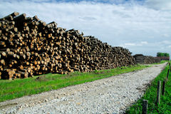 Timber stock. Large amount of timber is stored in huge stocks after a fierce strom Gudrun that rolled over southern Sweden in winter 2005 Stock Image