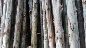 Timber texture Stock Images