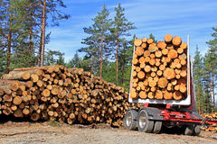 Timber Trailer and Stack of Logs Stock Photos