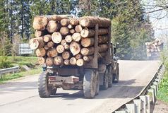 Timber transport cerry wooden logs Stock Image