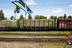 Timber transport. Crossing the landscape russia through the Trans-Siberian Train Royalty Free Stock Photography