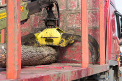 Timber transport. Truck with crane and a tree trunk Stock Photos