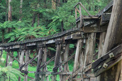 Timber trestle railway bridge in the Dandenong Ranges. A timber trestle railway bridge of the Puffing Billy tourist railway just outside Belgrave in the Stock Images