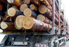 Timber truck Royalty Free Stock Photos