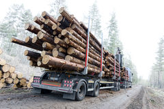 Timber truck on swedish dirt road Royalty Free Stock Photography