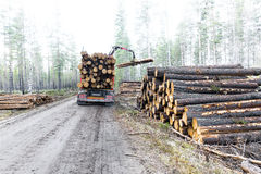 Timber truck on swedish dirt road Royalty Free Stock Images
