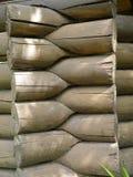 Timber wall Stock Image