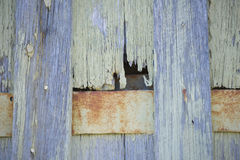 Timber wall, textured wood and rusty metal Stock Images