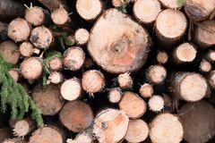 Timber Web Background. Harvested timber in a snowy Swedish forest royalty free stock photos