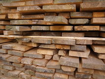Timber, which means life 1 Royalty Free Stock Photos
