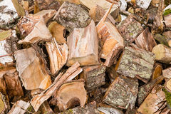 Timber wood Royalty Free Stock Photos